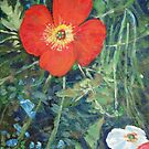 Garden with Bright Red and White Poppies by John Fish