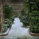 Snow Passage - Madrid by Gerardo Sánchez