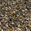 Stones. by Anne Scantlebury