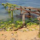 Moeraki jetty. by Anne Scantlebury