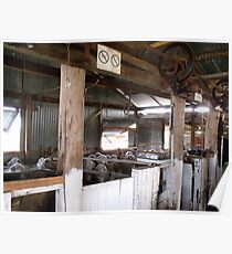 Shearing Shed Australia Poster