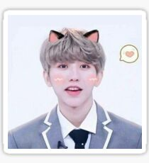 Cai Xukun Kitty Kat  Sticker