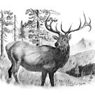 The Mystical Bull Elk by Russ Smith