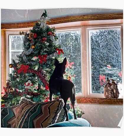Waiting for Santa! Poster