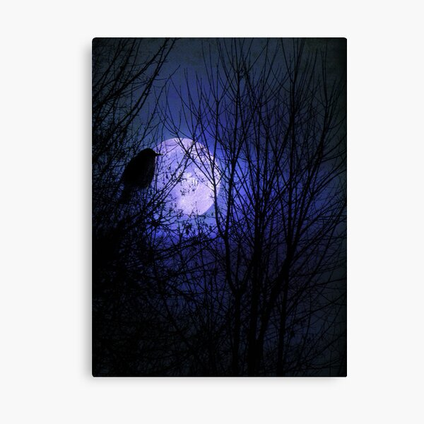 Winter's Moonglow Canvas Print