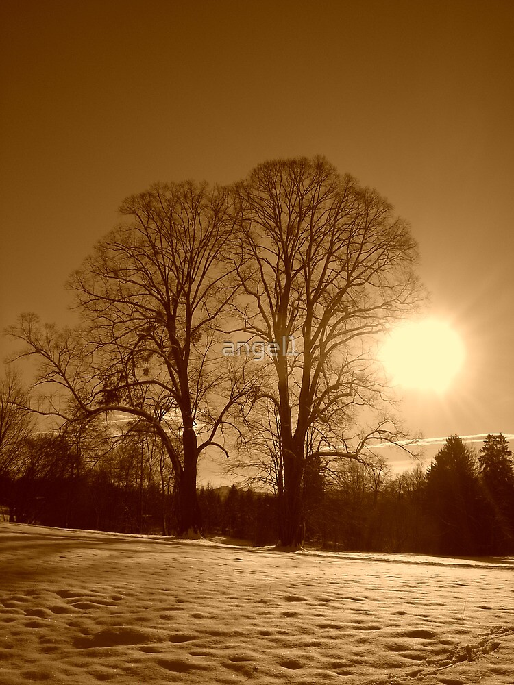 Sepia Sunrise  by ©The Creative  Minds