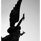 dark angel by FotosdaMau