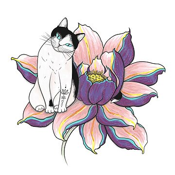 Lotus Cat de runcatrun