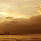 Finding Neverland by Rezoanratul