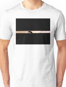 Ground Beetle - No Pun Intended T-Shirt