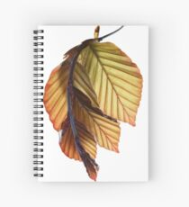 Beech Spiral Notebook