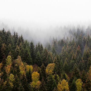 Autumn Love by tekay