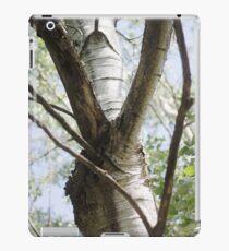 Graceful Birch iPad Case/Skin