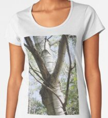 Graceful Birch Women's Premium T-Shirt