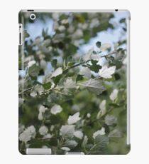 Shimmering Poplar iPad Case/Skin