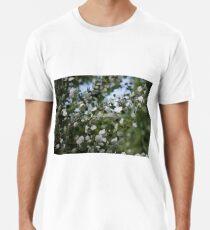 Shimmering Poplar Men's Premium T-Shirt
