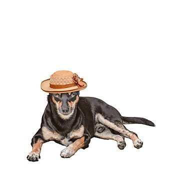 Screaming Internally Funny Dog Wearing Hat Random T-Shirt and Apparel for Animal Lovers and Socially Awkward by JollyKRogers