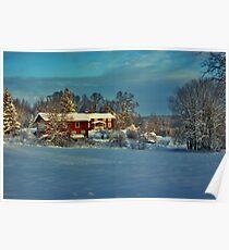 December Afternoon 2009 #1 Poster