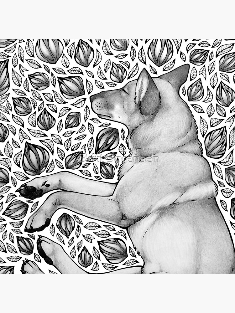 Dingo Dreaming by brittja