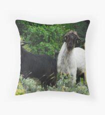 Mohair Goats in Turkey Throw Pillow