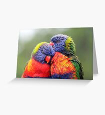 Canoodling in the Mist Greeting Card