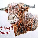 Snowy Highland Cow - Get Well Soon Card by EuniceWilkie