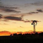 Good Morning Australia by Arthur Koole