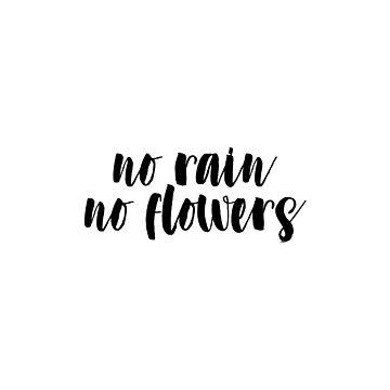 Sin lluvia no flores de clairechesnut