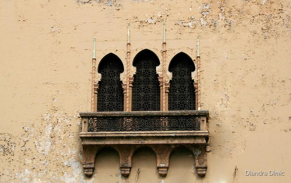 The Window by Diandra Dimic