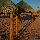 Palapa 12 by Richard G Witham