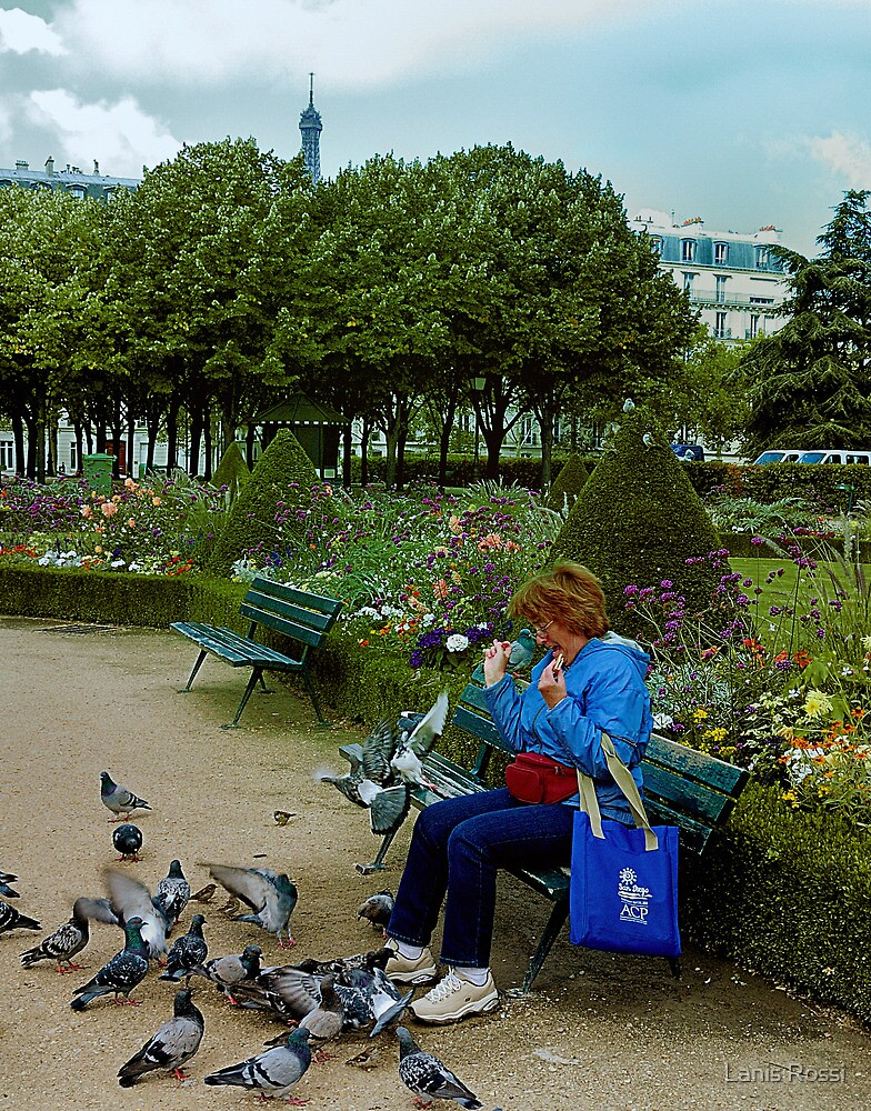 Never Ever Eat A Cookie In Paris When Pigeons Are Present by Lanis Rossi