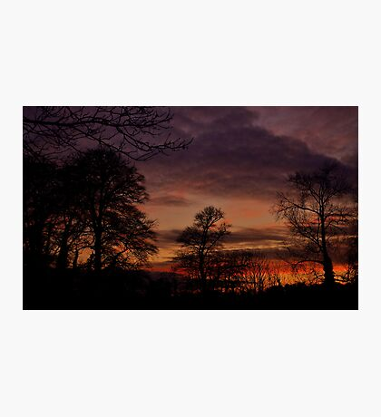 Winter sunset. Photographic Print