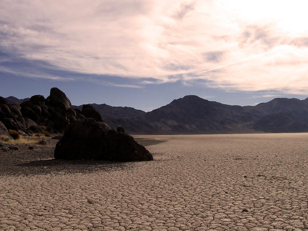 Death Valley- Devil's Racetrack 2 by Michael Berns
