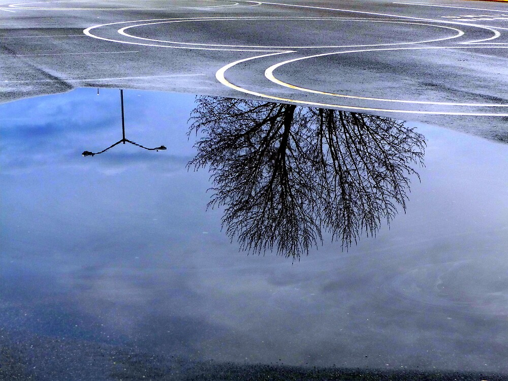 Blue Reflections in Puddle by atoth