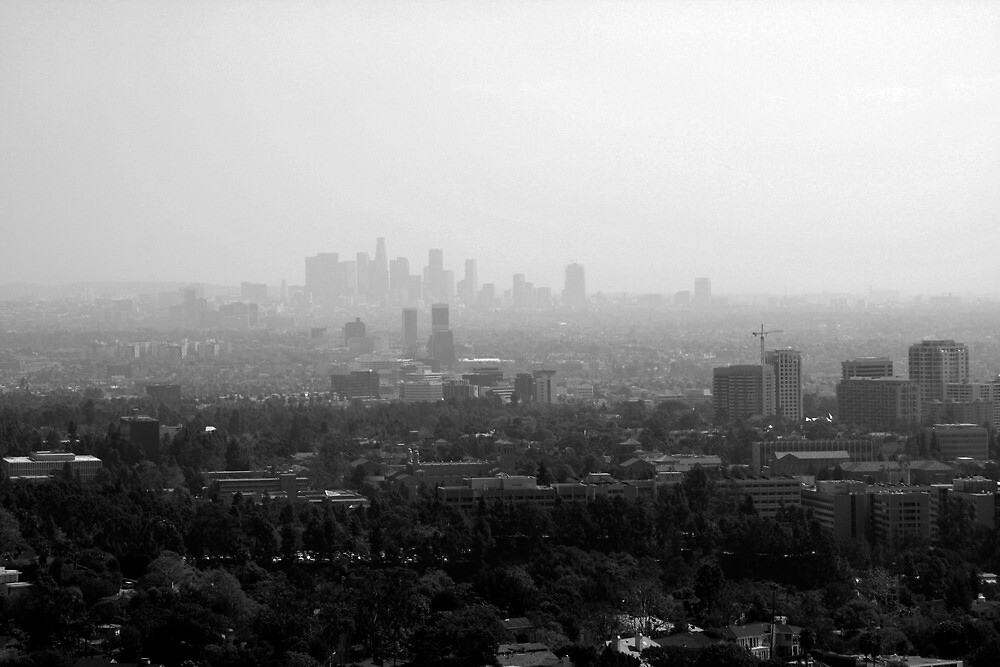 Los Angeles Skyline, Black and White by Michael Berns