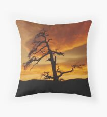 Sinister Tree at Sunset Throw Pillow