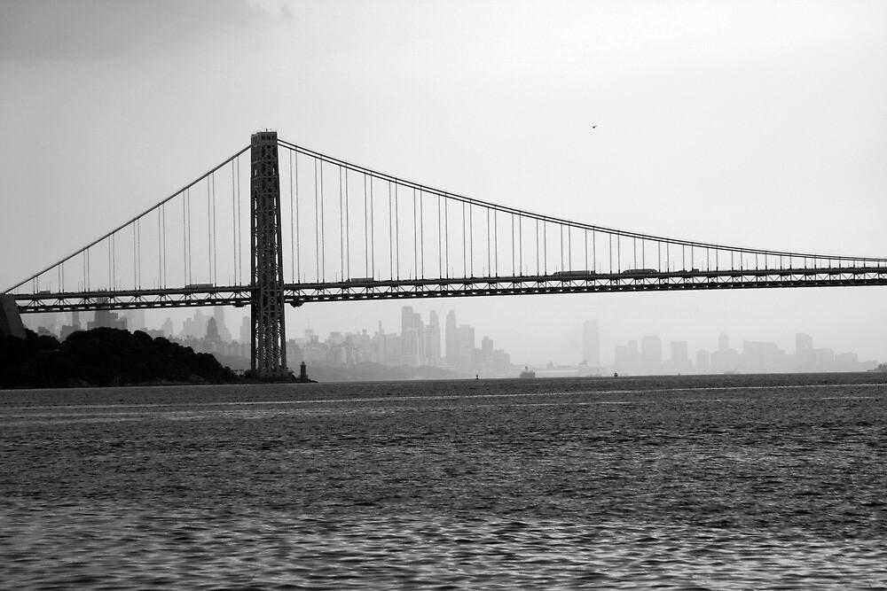 Hudson River and George Washington 3 by Michael Berns