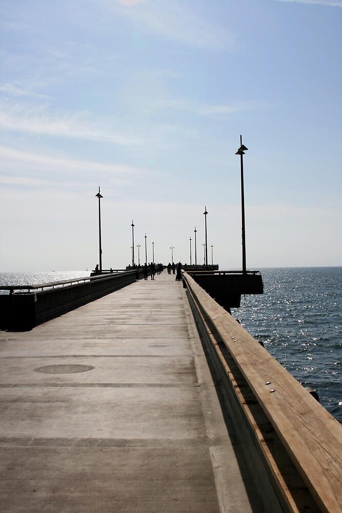 Venice Beach Pier by Michael Berns