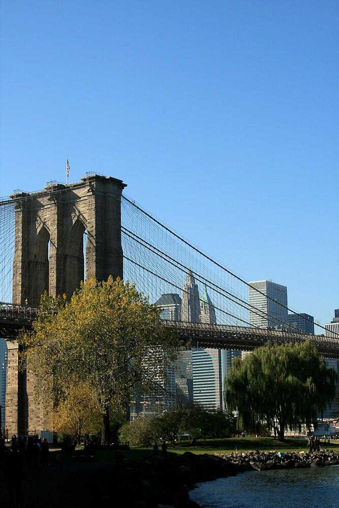 Brooklyn Bridge from Brooklyn 1 by Michael Berns