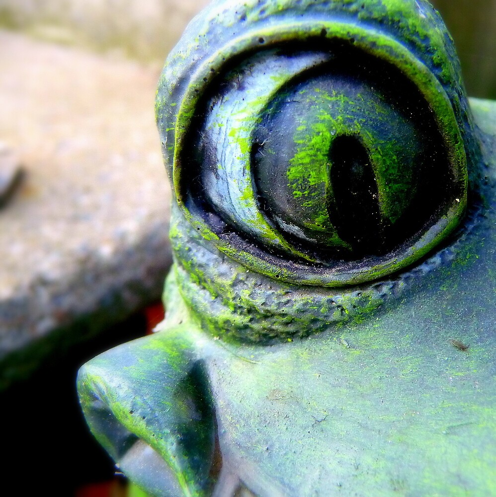 My Little Frog Friend by atoth