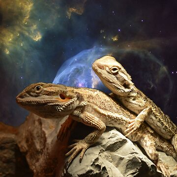 Space Lizards by notfamous