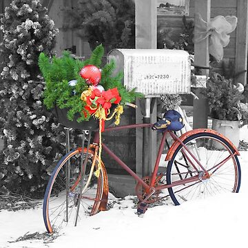 Christmas Decorations on a Bicycle by rhamm