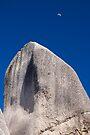 Tropical Menhir by Walter Quirtmair