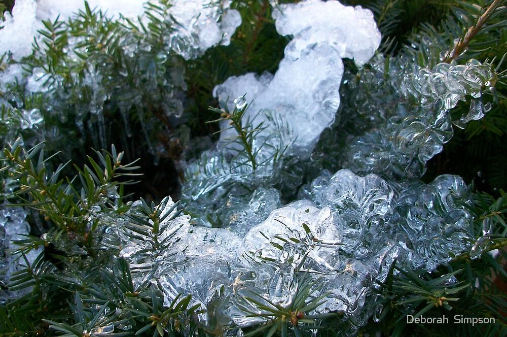 Frozen Bush by Deborah  Simpson