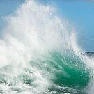 Indian Ocean 2 by Wendy  Slee