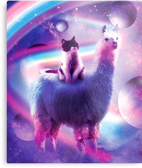 Kitty Cat Riding On Rainbow Llama In Space by SkylerJHill