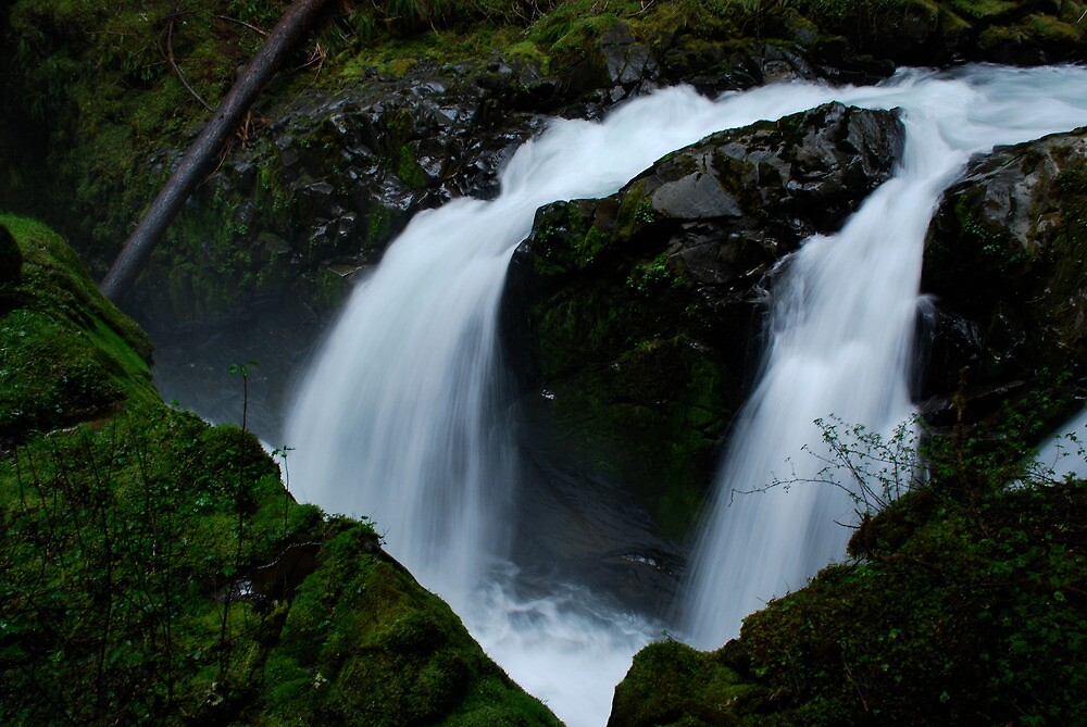 Sol Duc Falls, Olympic National Park by Octoman