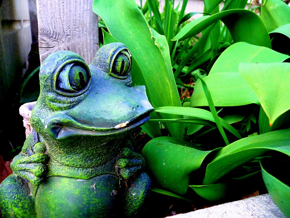 Green frog in the garden by atoth