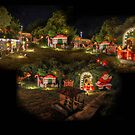 Christmas Lights by Peter Hammer