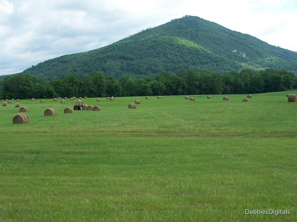 Gathering hay bales by DebbiesDigitals